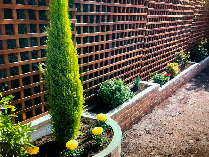 Futura Jardín: Servicios de jardinería y Poda en Rivas Vaciamadrid